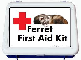 Learn what should be included in a ferret first aid kit.