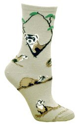 ferret socks