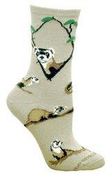 ferret socks